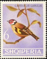 Albania 1964 Birds h