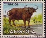 Angola 1953 Animals from Angola l