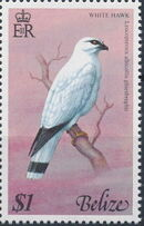 Belize 1977 Birds of Belize (1st Issue) f