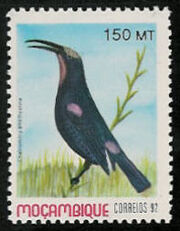 Mozambique 1992 Birds of Moçambique (4th Issue) a