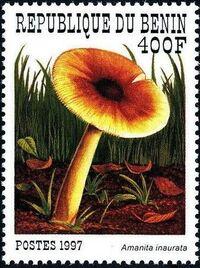 Benin 1997 Mushrooms f