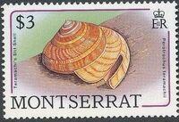 Montserrat 1988 Sea Shells m