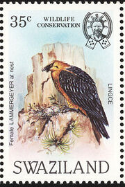 Swaziland 1983 WWF Bearded Vulture d