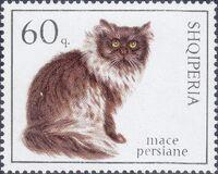 Albania 1966 Cats e