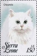 Sierra Leone 1993 Cats of the World h
