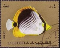 Fujeira 1972 Exotic Fishes j