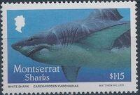 Montserrat 1987 Sharks c