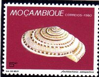 Mozambique 1980 Stamp Day - Maritime Shells of Mozambique e