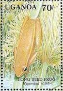 Uganda 1991 Animals of Uganda's Wetlands g
