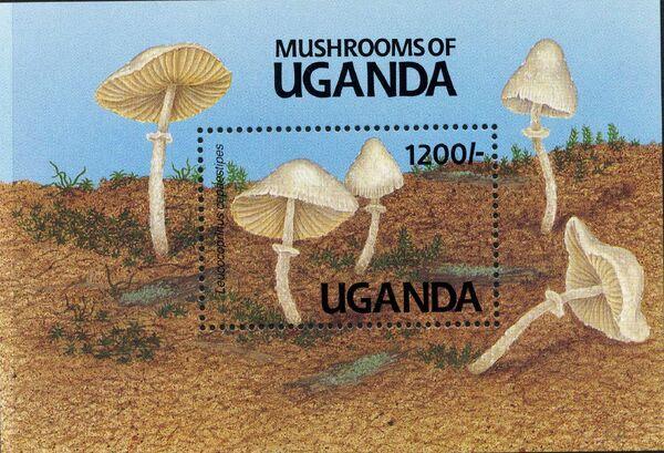 Uganda 1991 Mushrooms of Uganda i
