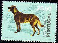 Portugal 1981 50th anniversary of the Portuguese Kennel Club e