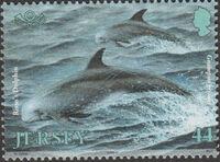 Jersey 2000 Marine Life IV - Marine Mammals e