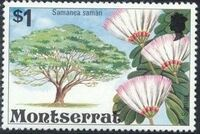 Montserrat 1976 Flowering Trees l