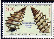 Angola 1974 Sea Shells j