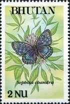Bhutan 1990 Butterflies c
