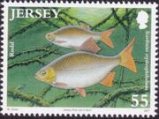 Jersey 2010 Jersey Nature - Freshwater Fish d