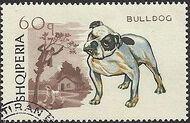 Albania 1966 Dogs e