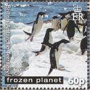 British Antarctic Territory 2011 Frozen Planet - Penguins g