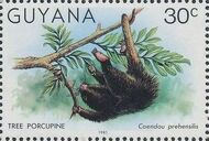Guyana 1981 Wildlife a