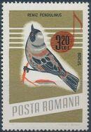 Romania 1966 Song Birds h