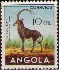 File:Angola 1953 Animals from Angola c.jpg