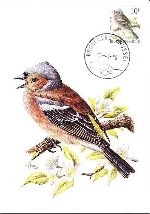Belgium 1990 Birds (B) MCa