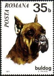 Romania 1971 Dogs b