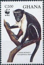 Ghana 1994 WWF - Diana Monkeys b