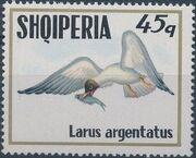 Albania 1973 Sea Birds e