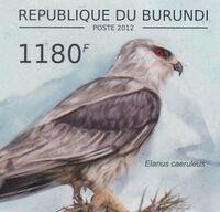 Burundi 2012 Birds of prey j