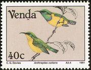 Venda 1991 Birds c