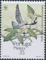 Madeira 1991 WWF Trocaz Pigeon d