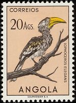 Angola 1951 Birds from Angola t