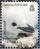 British Antarctic Territory 2006 Penguins of the Antarctic a
