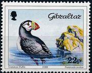 Gibraltar 1988 Birds b