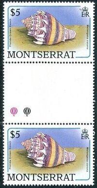 Montserrat 1988 Sea Shells gn