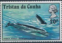 Tristan da Cunha 1975 Whales d