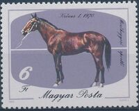 Hungary 1985 200th Anniversary of Horse Keeping in Mezohegyes e