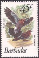 Barbados 1979 Birds k