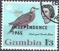 Gambia 1965 Birds Overprinted i.jpg