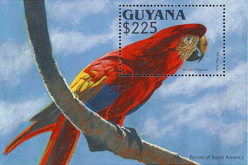 Guyana 1993 South American parrots SSb