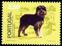 Portugal 1981 50th anniversary of the Portuguese Kennel Club b