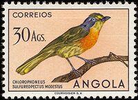 Angola 1951 Birds from Angola v