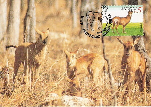 Angola 1990 WWF - Giant Sable Antelope MCc