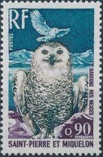 St Pierre et Miquelon 1973 Birds f
