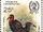 Swaziland 1985 WWF Southern Ground Hornbill (Audubon birth bicentenary) c.jpg