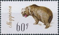 Albania 1965 Brown Bear h