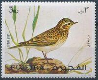 Fujeira 1971 European birds e