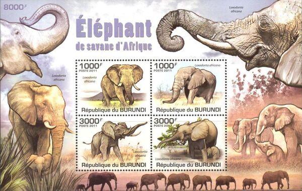 Burundi 2011 Elephants of the African Savanna MSa