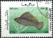 Afghanistan 1986 Fishes g